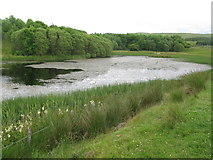 NX6592 : Reservoir beside the B729 by G Laird