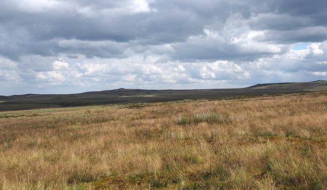 Moorland east of Sleightholme Moor Road