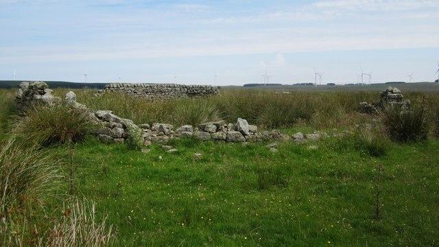 Ruined sheepfold north of Hagdon (2)