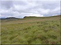 SH7542 : Carreg y Ieirch from the southeast by Richard Law