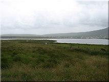F6305 : The land leading down to Keel Lough by David Purchase