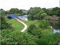 SK7954 : Newark - King's Marina footbridge by Dave Bevis