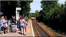 SW8132 : Falmouth Town station passengers by AlastairG