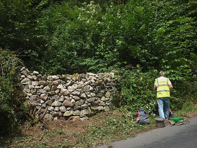 Repaired drystone wall, Storrs Lane