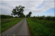 SE6548 : Long Lane towards York by Ian S