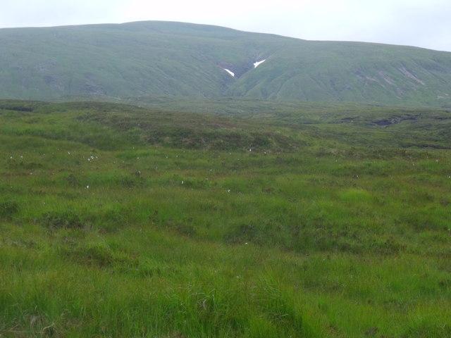Looking south along the slopes of Creag Riabhach, Glen  Lyon