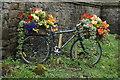 SE2544 : Tour De France Floral  Bike by Ian S