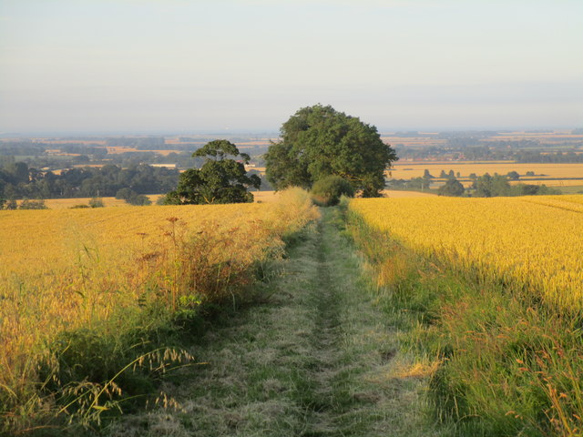 Bridleway to Hawerby and Beesby