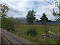 TM1543 : Derelict land between Commercial Road and the River Gipping by David Smith