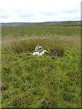 SH7743 : Llechwedd Mawr summit pile by Richard Law