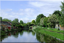 SO8690 : Staffordshire and Worcestershire Canal at Swindon, Staffordshire by Roger  Kidd