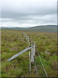 SH8142 : Along the old county boundary by Richard Law