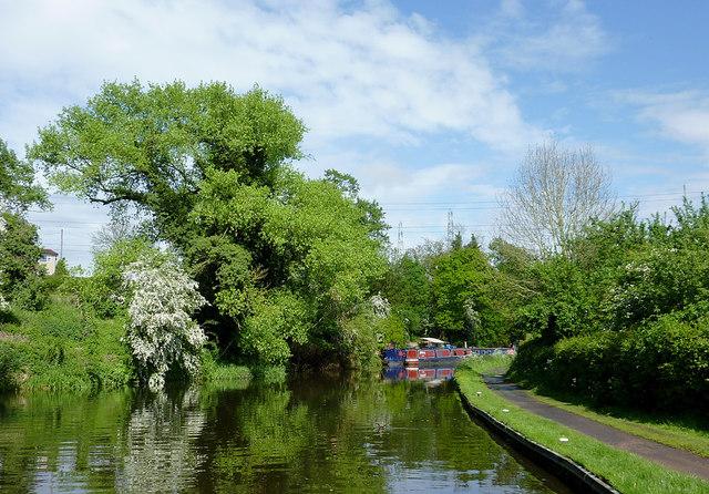 Canal east of Hinksford Lock near Swindon, Staffordshire