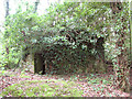TG1721 : Type-22 pillbox on the southern edge of Buxton Heath by Evelyn Simak