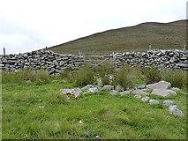 SH8240 : Gateway in the ffridd wall by Richard Law