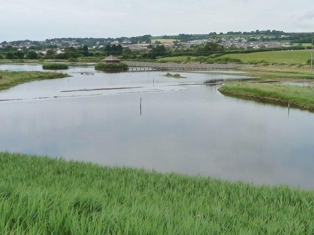 Island Hide, Black Hole Marsh, Axe Estuary wetlands