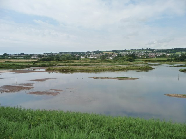 Southern side, Black Hole Marsh, Axe Estuary wetlands