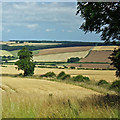 SE8865 : Wolds fieldscape by Pauline E