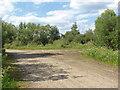 TQ0075 : Disused gravel pit roadways by Alan Hunt