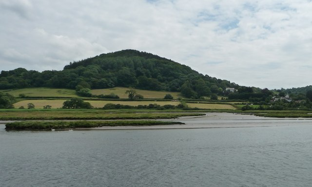 Southern tip of Axmouth Marsh, below Hawkesdown Hill