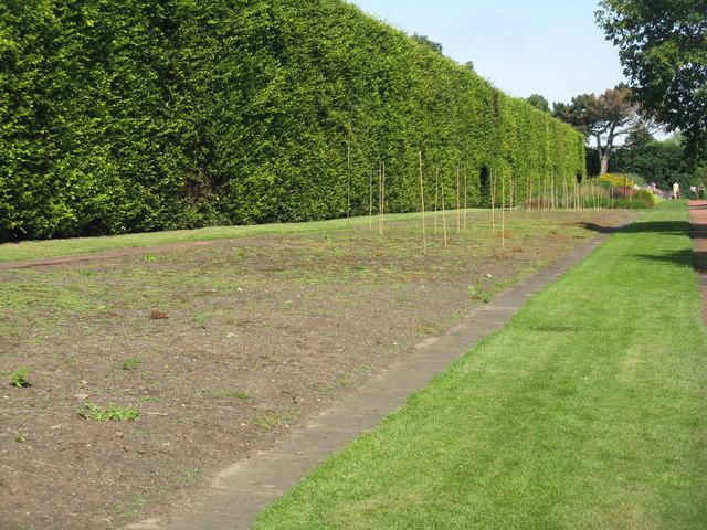 Royal Botanic Garden Edinburgh Herbaceous Border