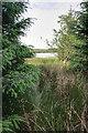 NY9382 : Sweethope Lough by Mick Garratt