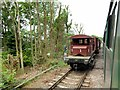 SU6635 : Mid-Hants Railway near Four Marks by David Dixon