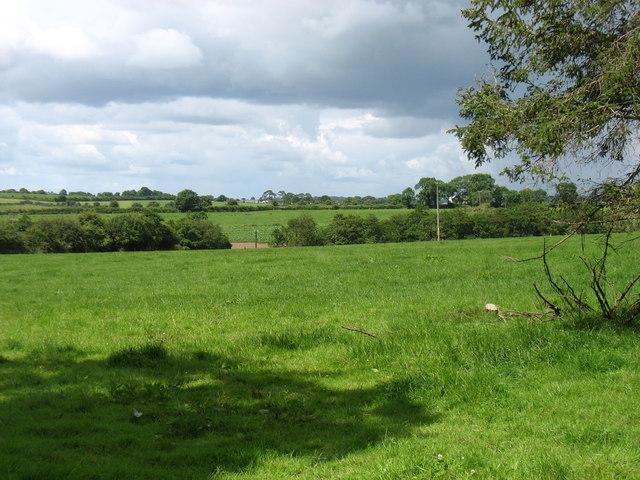 Farmland near Daly's Cross Roads