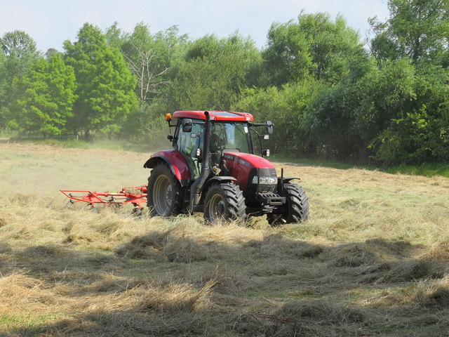 Mowing the hay meadow in Oxford city centre