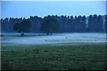 ST0104 : Mid Devon : Grassy Field by Lewis Clarke