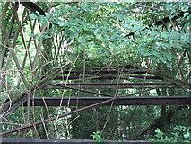 SJ6903 : Derelict bridge at Blists Hill by Gareth James