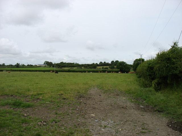 Farmland near Ballinunty