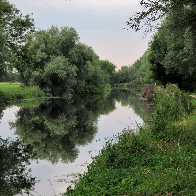 Still waters near Clayhithe