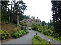 NU0702 : The approach to Cragside on the estate drive by Raymond Knapman