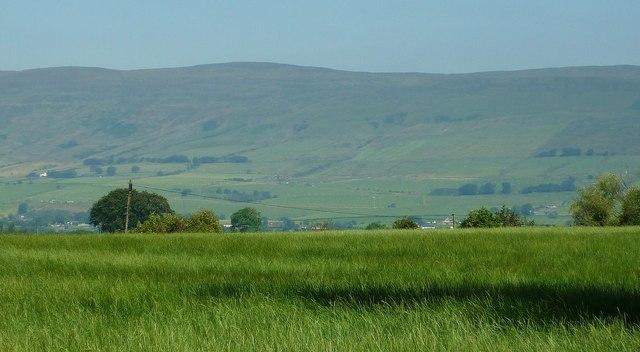 Grassland, Wester Gartshore