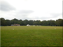 TQ4223 : Sheffield Park Cricket Ground by Paul Gillett