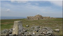 NY6834 : The Triangulation pillar and summit shelter on Cross Fell by steven ruffles