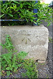 ST6076 : Benchmark on boundary wall of Dovercourt Road Day Centre by Roger Templeman