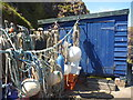 NT9167 : Coastal Berwickshire : Blue Shed And Ropes At St Abbs by Richard West