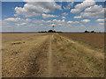 TL2466 : Pathfinder path towards Godmanchester by Hugh Venables