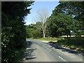 TA1167 : B1253 towards Rudston  by JThomas