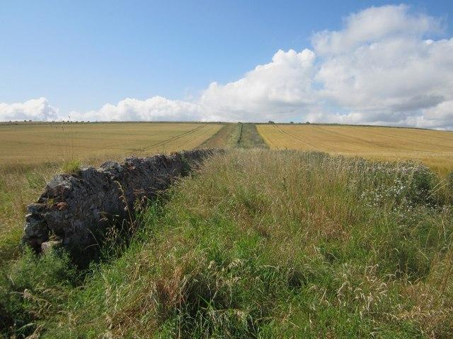 Boundary between arable fields