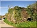SX4364 : Lime kilns near Weir Quay by Derek Harper