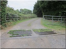 ST6267 : Cattle grid, gateway and drive to Newlands farm by Dr Duncan Pepper