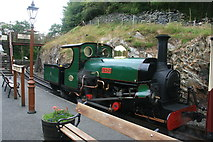 SH6441 : Linda at Tanybwlch by Graham Hogg