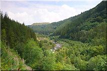 SN7673 : Coedwig yr Hafod / The Hafod Woodland by Ian Medcalf