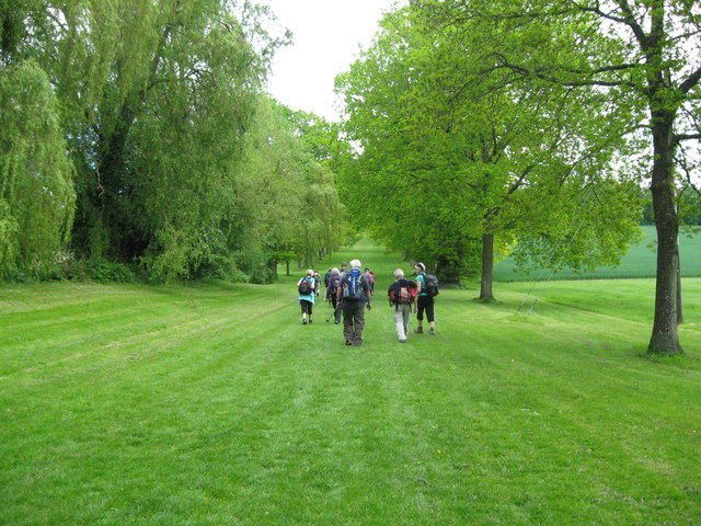 Wide green way to the Arches-Shobdon, Herefordshire