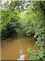 SX7253 : River Avon from Gara Bridge by Derek Harper
