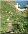 TA2372 : Steps down into the ravine, Little Thornwick Bay by Pauline E