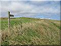 TA2372 : Permissive path near Chatterthrow by Pauline E